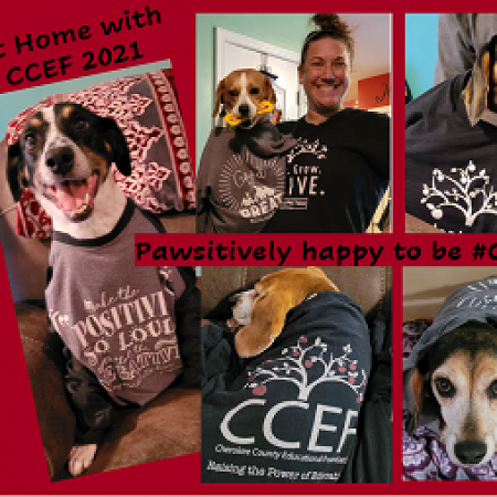 Pawsitively Happy to be CCSDFam